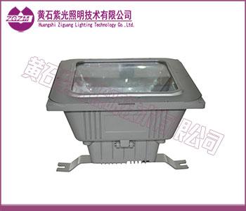 紫光GF9155_紫光照明GF9155防眩棚顶灯图片